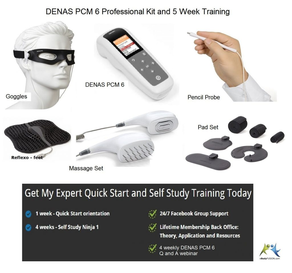 DENAS PCM 6 - Professional Kit and Training